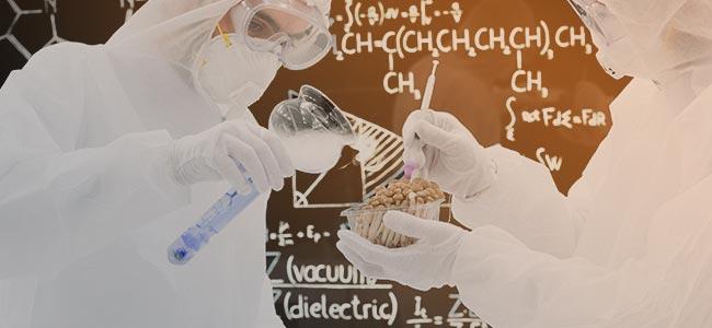 STUDIES NAAR DE THERAPEUTISCHE WERKING VAN PSILOCYBINE