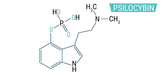 WAT IS PSILOCYBINE?