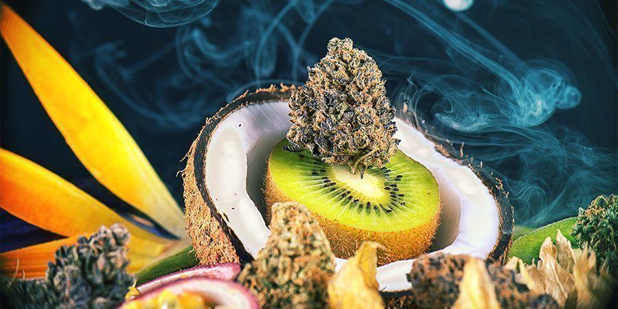 Smaakvolle Cannabissoorten