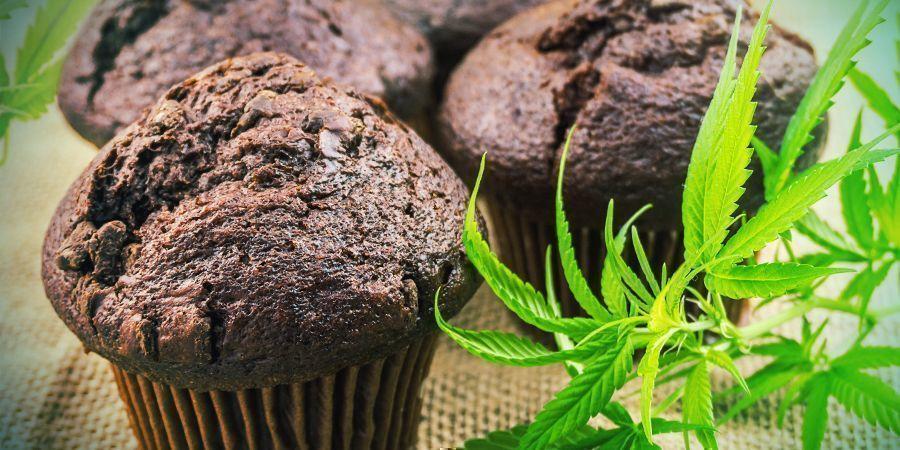 Biologische Beschikbaarheid: Cannabis Edibles
