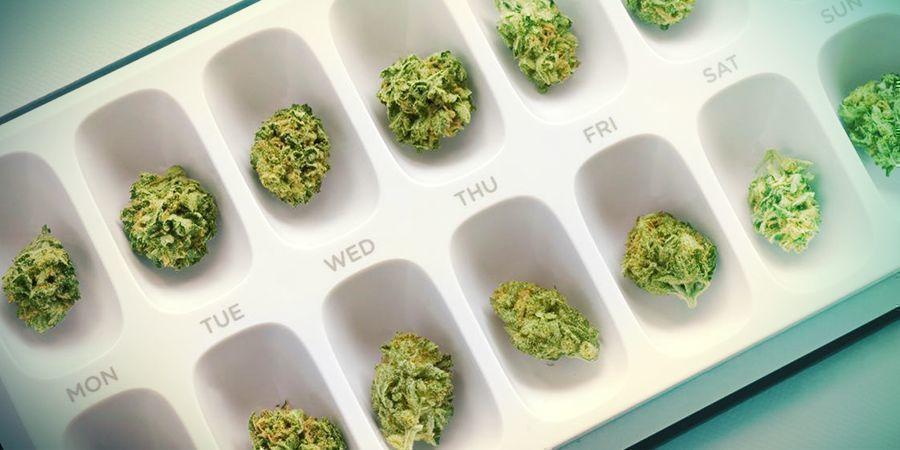 THC Zorgt Niet Altijd Voor Een High