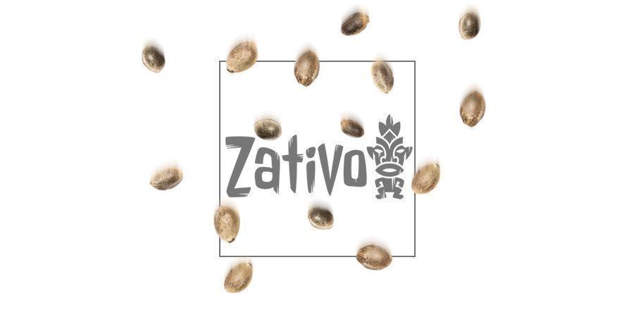Afghan Kush (Zativo Seeds)