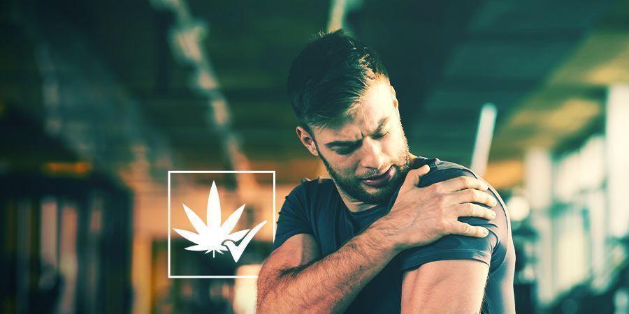 Cannabis: Een Gewettigd, Werkzaam Geneesmiddel