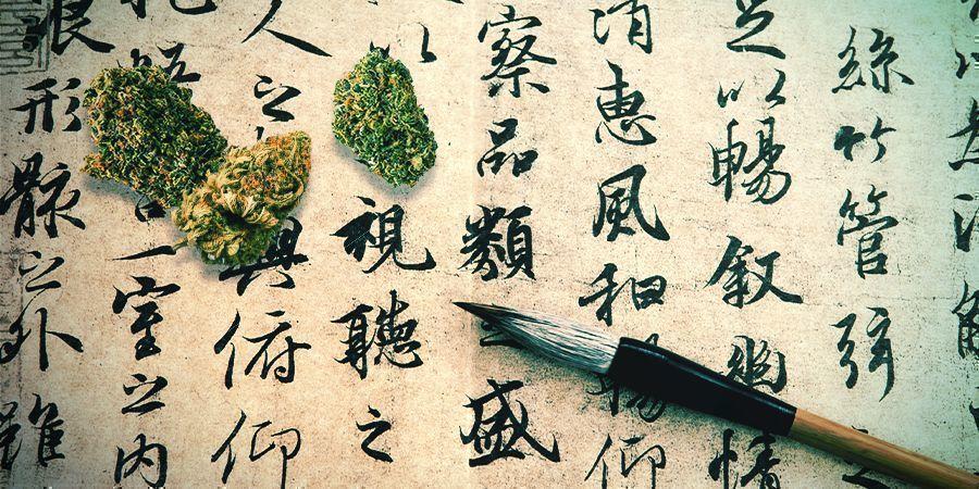 Cannabis: Een Traditioneel Geneesmiddel