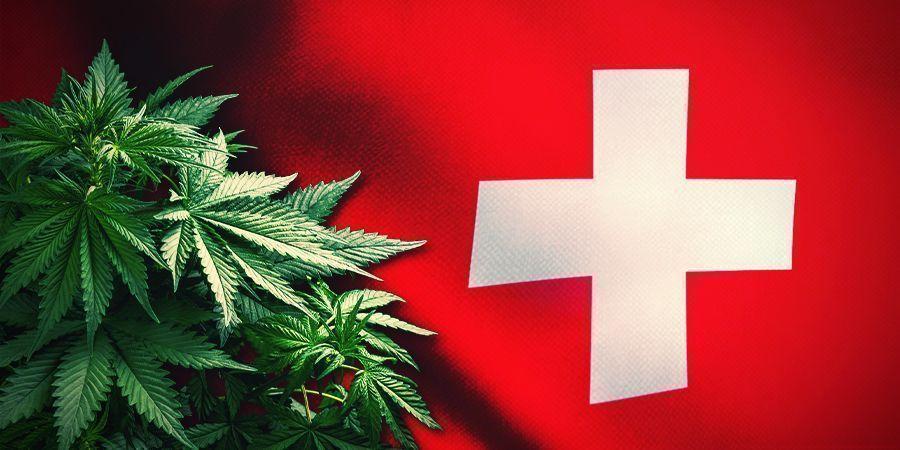 CASESTUDIE: ZWITSERLAND EN ITALIЁ EN THC-ARME WIET