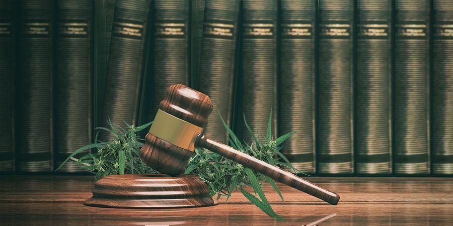 Acapulco Gold: Mexicaanse Immigratie En Het Cannabisverbod