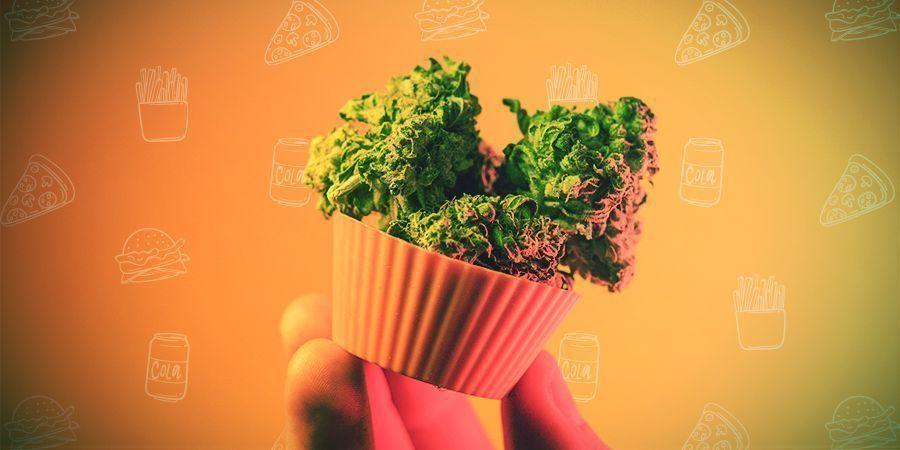 Hoe Doseer Je Cannabis-edibles?