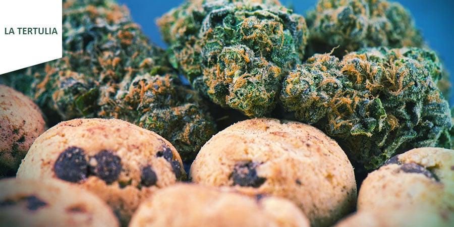 Coffeeshop La Tertulia Amsterdam - Cannabis-Edibles