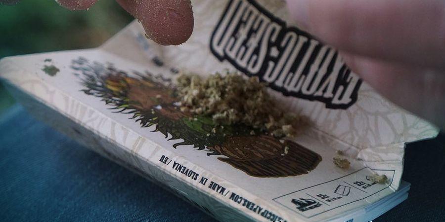 Exotic Seed: Een Gemeenschapsgericht Bedrijf