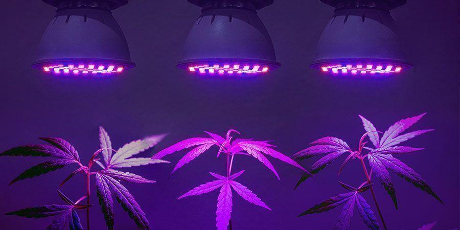 Gebruik de efficiëntste verlichting