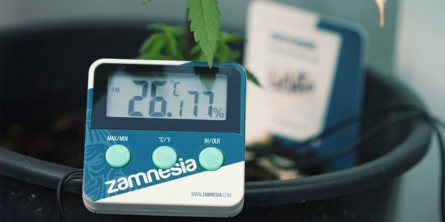 Thermometer/Hygrometer voor cannabis