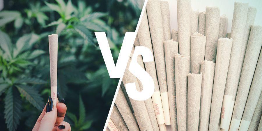 Cannabis Afhankelijkheid Versus Misbruik