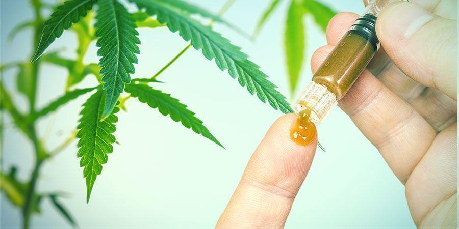 De Voordelen van Cannabiswortels