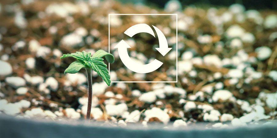 Herbruikbaar - Wietplanten Kweken