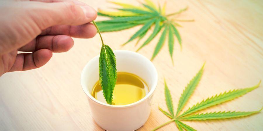 Edibles van Cannabisconcentraten: infuseren in een vet naar keuze