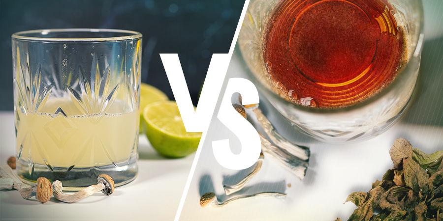 Lemon Tek Versus Paddothee