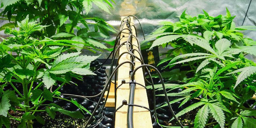 Commerciële manieren - Irrigatiesystemen