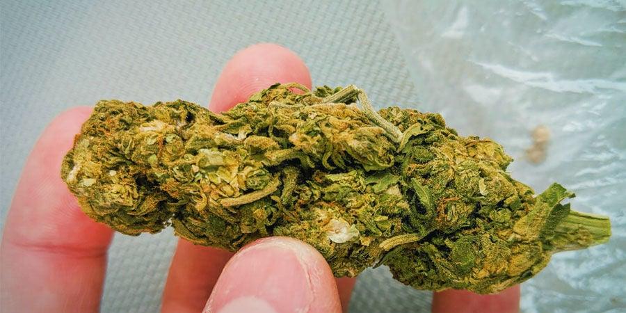 Soorten verontreinigingen in cannabis: Zand