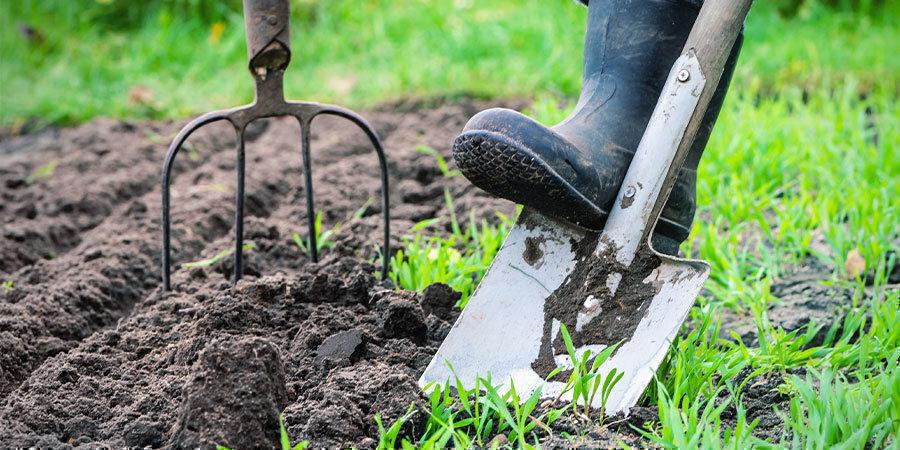 Pepers Kweken Voor Beginners: Maak kweeklocatie klaar