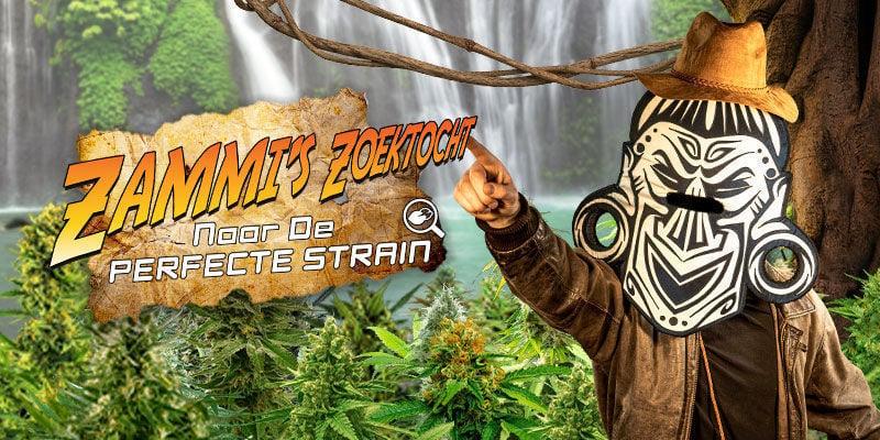 Cannabis Seedfinder