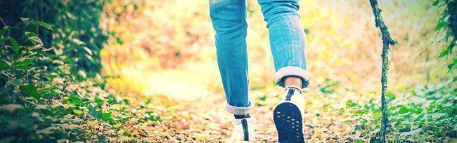 Doen Als Je High Bent: Verdwaal In Het Bos
