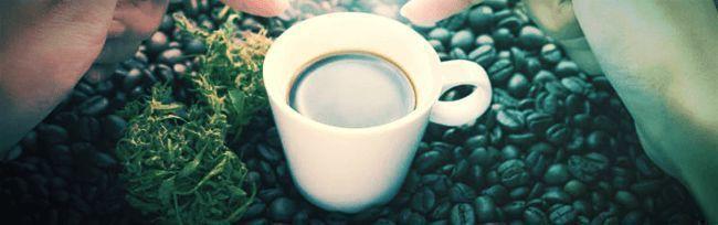 Doen Als Je High Bent: Zet Koffie En Krijg Dingen Gedaan