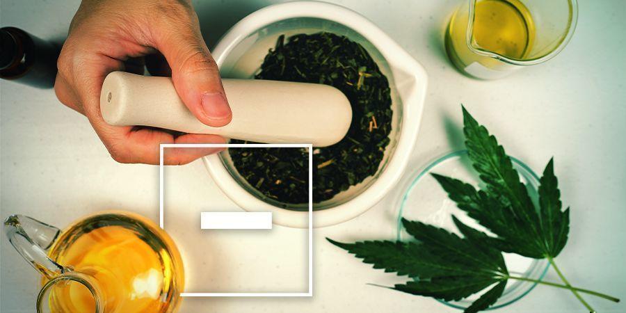 Nadelen van olijfolie met wiet