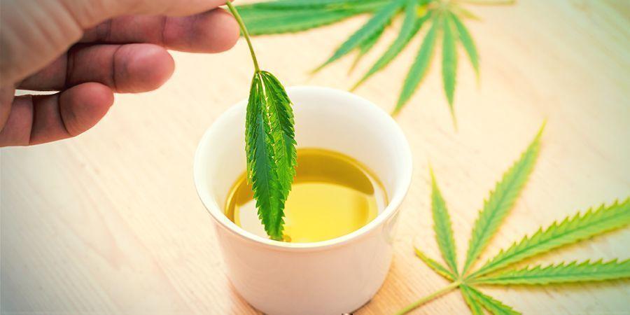 Wat is olijfolie met wiet?