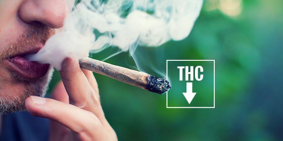 Kun Je Rode Ogen Voorkomen? cannabis