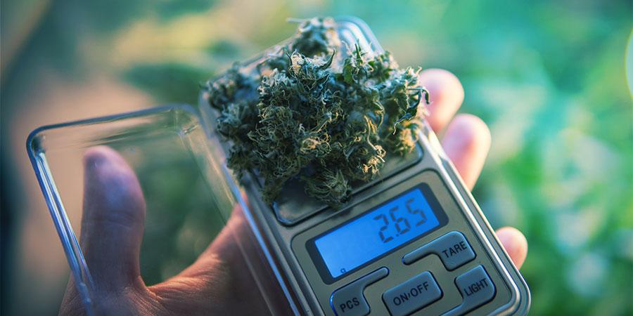 Het Doseren Van Cannabis Edibles Is Een Kunst Opzich