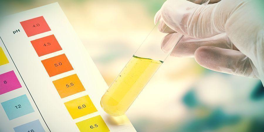 Waarom Is De pH Zo Belangrijk Voor Het Kweken Van Cannabis?