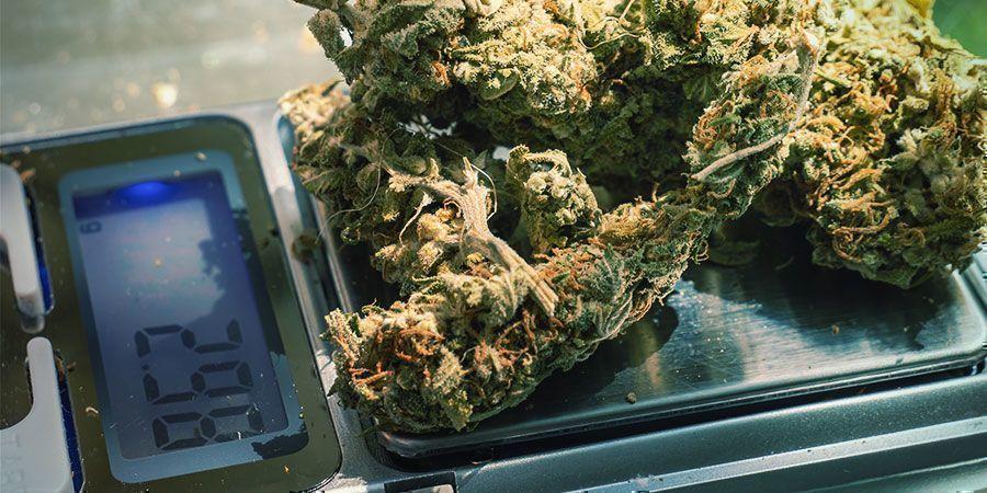 Ontspannen met cannabis: Probeer verschillende doseringen