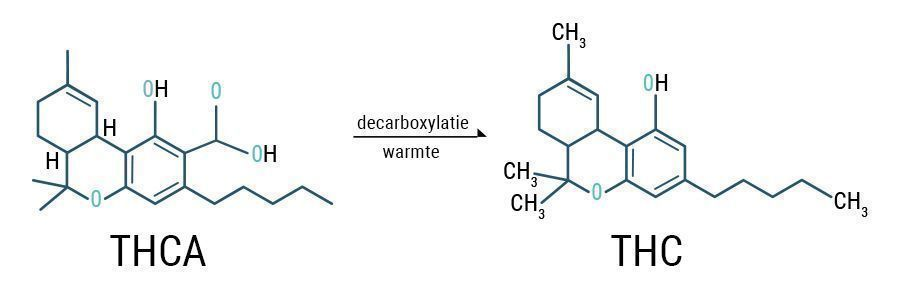 Decarboxyleren THCA & THC