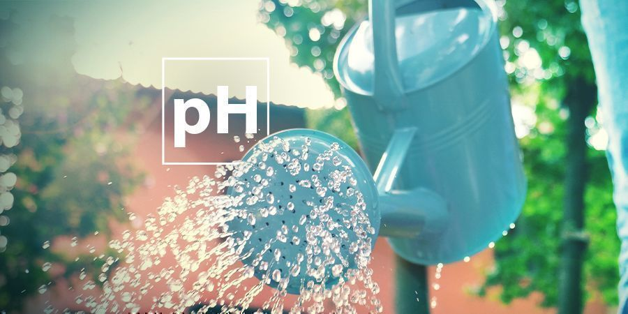 Problemen met de pH