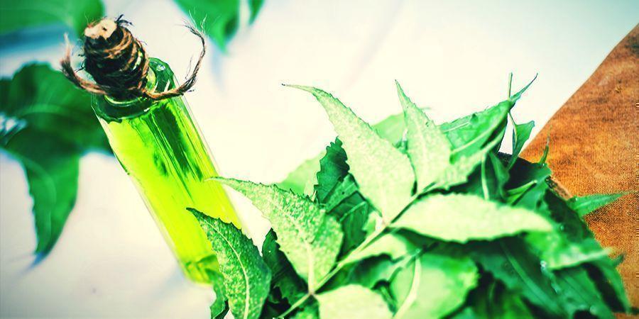Neemolie - sprays waarmee je je cannabis kunt besproeien
