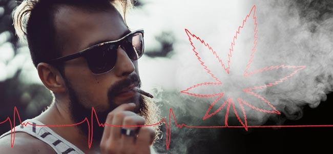 Medische Vs. Recreatieve Cannabis: Het Zit Allemaal In Je Hoofd