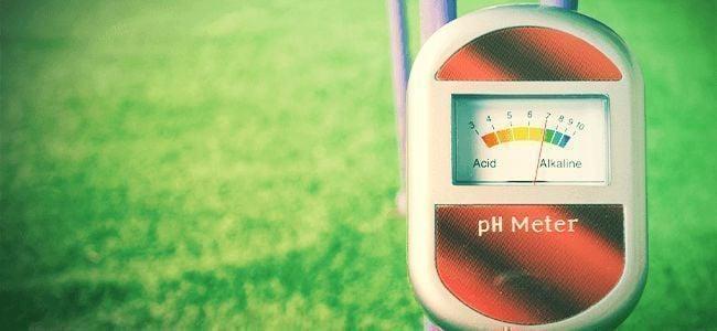Betere Wiet Kweken: pH Waarden
