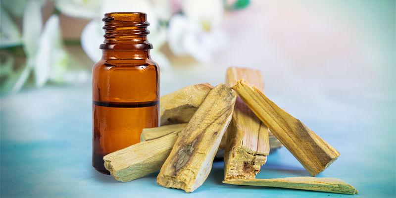 Hoe brand je de essentiële olie van Palo santo?