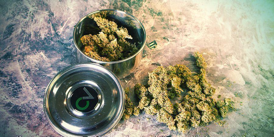Cannabis Bewaren CVault