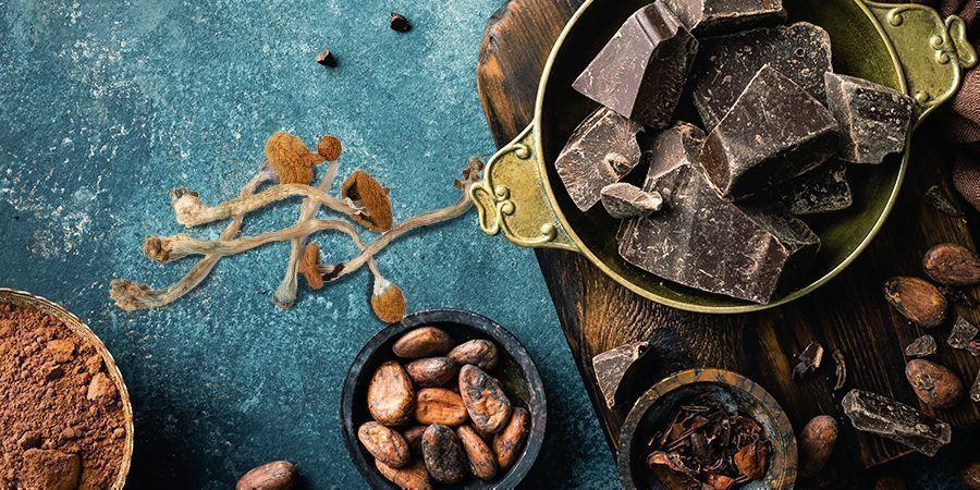 Paddochocolade