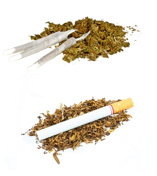 Cannabis and tobacco seperate use