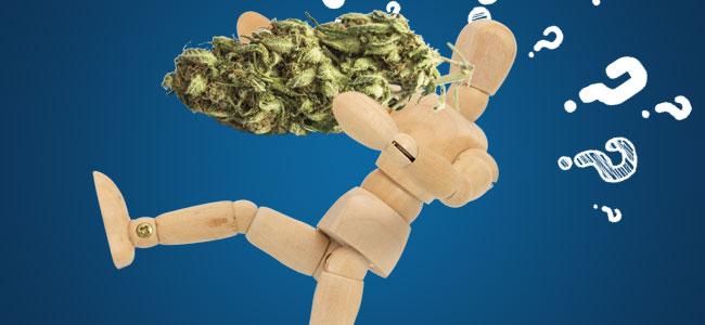 Hoe Kan Cannabis Helpen?