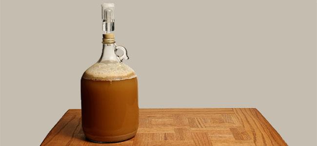 Bierbrouwen Fermenter