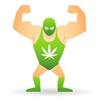 Cannabis veel te sterk