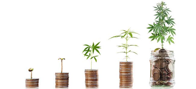 Groeiende Duitse cannabismarkt