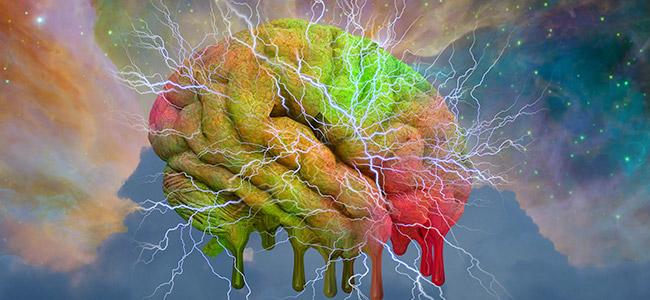 LSD en het brein