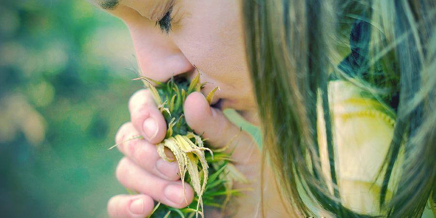 Redenen Om Met Tabak Te Stoppen: Smaak- En Reukvermogen