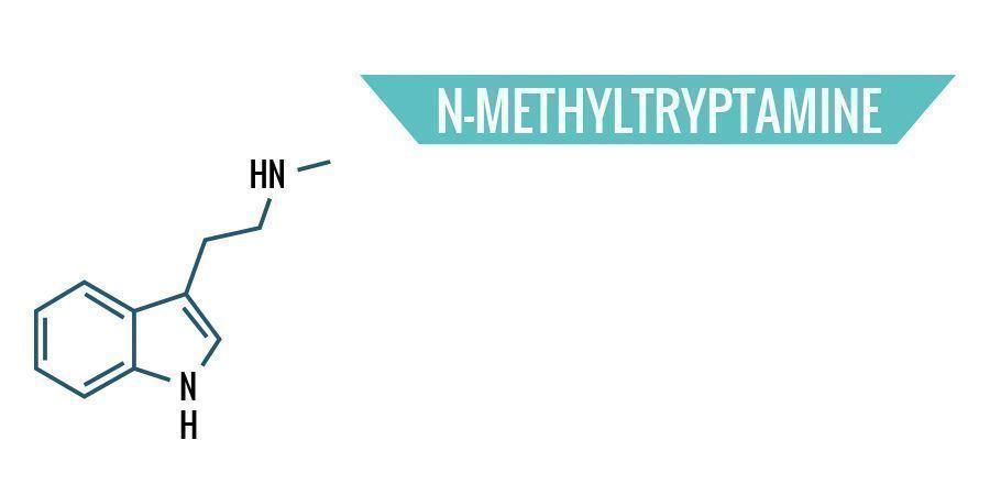 N-Methyltryptamine
