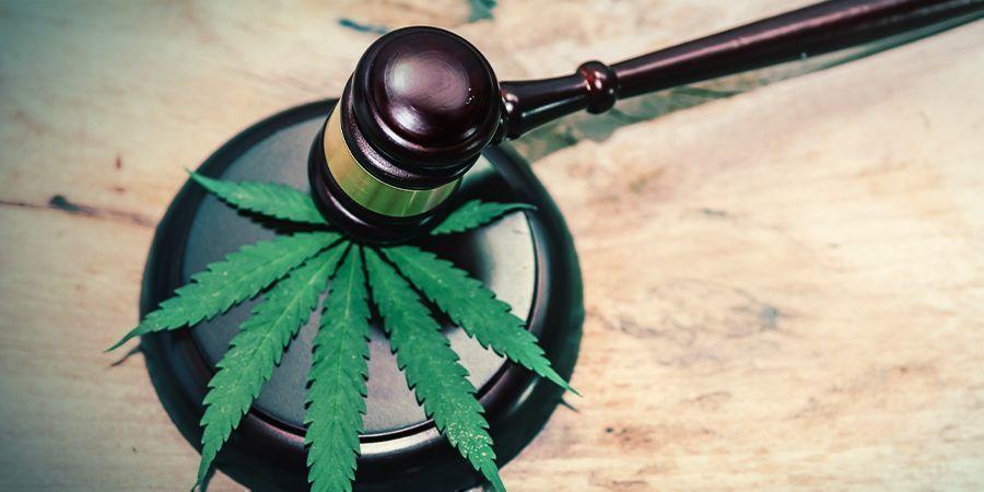Wat Zijn Legale Highs?