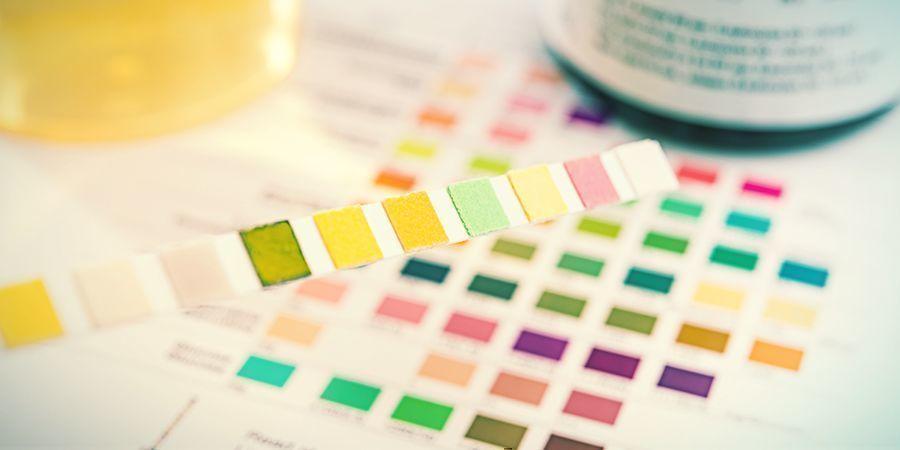 Waar Wordt Bij Drugstests Op Gelet?